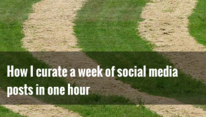 curate social media